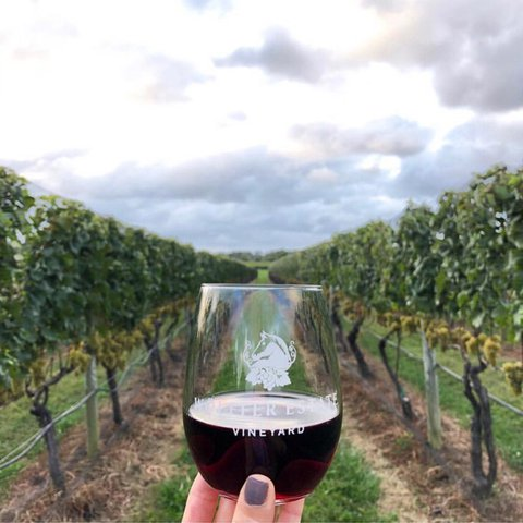 Cabernet Franc + cool Fall days = a match made in heaven 🍷 Join us for The Wine Down tonight in the Main Tasting Room for special flights, small plates, and wines by the glass or bottle! 📸: @mariajabad . . . . . . . . . .  #wolffer #wolfferwine #wolfferestate #wolfferestatevineyard #wolfferstyle #wine #winemaking #winelover #winetasting #wolffercider #wolfferrose #rosecider #rosécider #hardcider #roséallday #Rosé #roséseason #applecider #summerdrink #pinkdrink #sparkling #bubbly #redwine #fallweather #fallfashion #montauk #hamptons #eastend #nyc