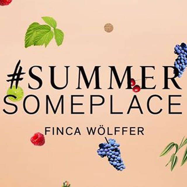 "Comment: wolfferwine said ""Wondering what the story behind our year-round Rosé #FincaWolffer is? 🍷 Listen in as @joeywolffer and Roman fill you in! 🔊👆🏽 Then, join us in NYC as we kick off two months of #SummerSomeplace 🌴🌴 pop-ups this week where you can sample the wine + be transported with your own slice of Summer! More info in our #instastory highlights! ⭐️ . . . . . .  #finca #fincawolfferrose #wolffer #wolfferwine #summer #summerrosé #rosé #rose #roseallday #roséallday #yeswayrosé #yesplease #designs #popup #nycpopup #trending #wino #wine #foodandwine #florals #branding #jetsetter #roséallyear #summervibes #drinklocal #pink #millenialpink"""